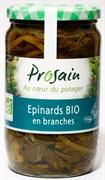 01 Epinards Branches Pro Sain