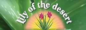 Lily of the desert : Aloe Vera